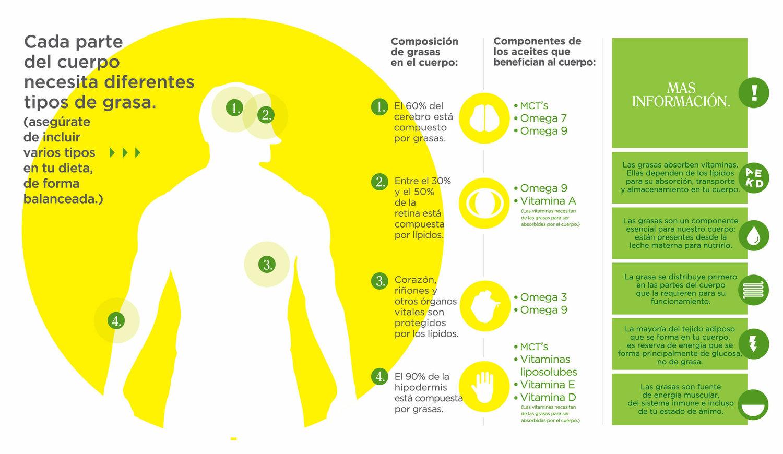 el+cuerpo,+el+aceite+y+sus+beneficios.jpg
