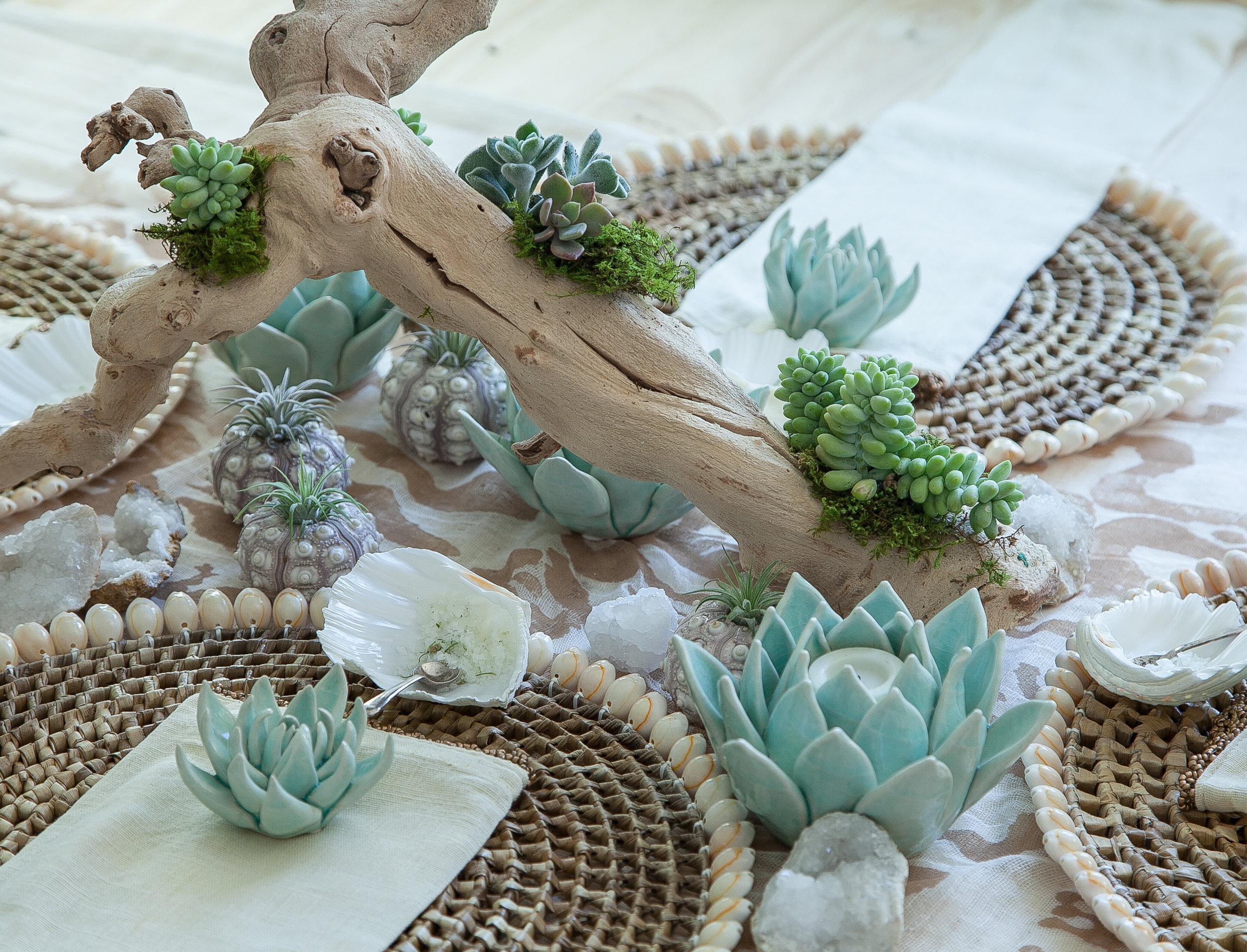 Driftwood Style Succulent Centerpiece Workshop The New Coastal Retreats
