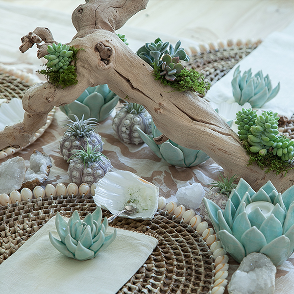 DRIFTWOOD-STYLE SUCCULENT CENTERPIECE WORKSHOP   $75  Friday 2:30 - 3:30PM  Saturday 1:00 - 2:00PM