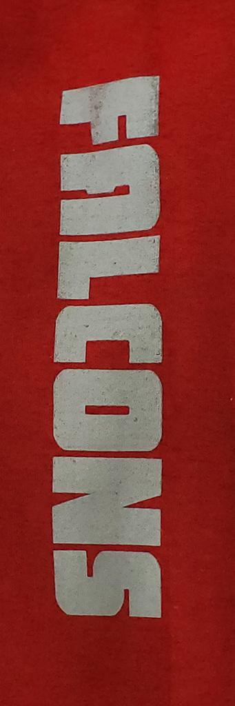 Red Van Horn Hoodie - VH sleeve.jpg