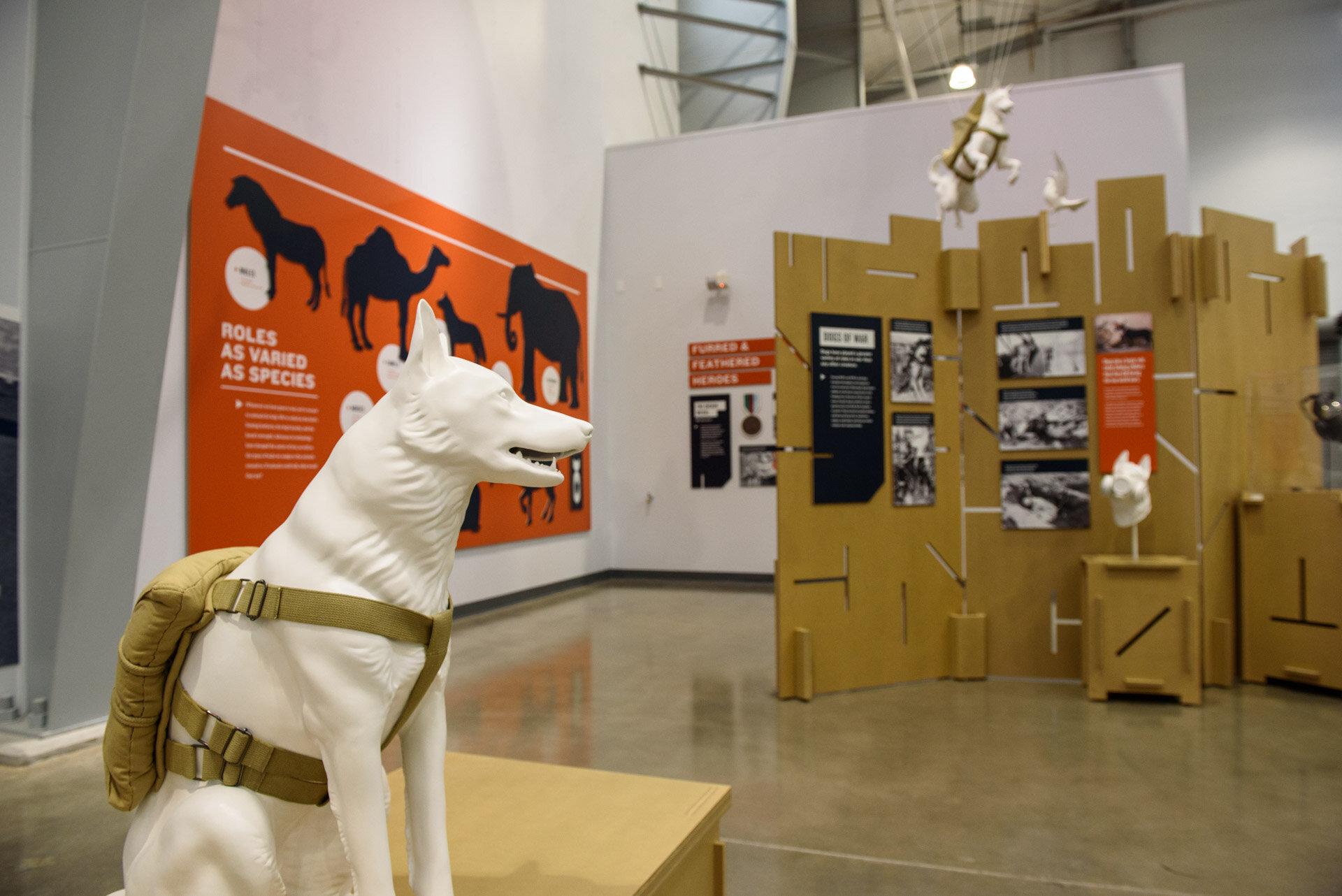 Animals_In_War_Opening_Web-0497.jpg