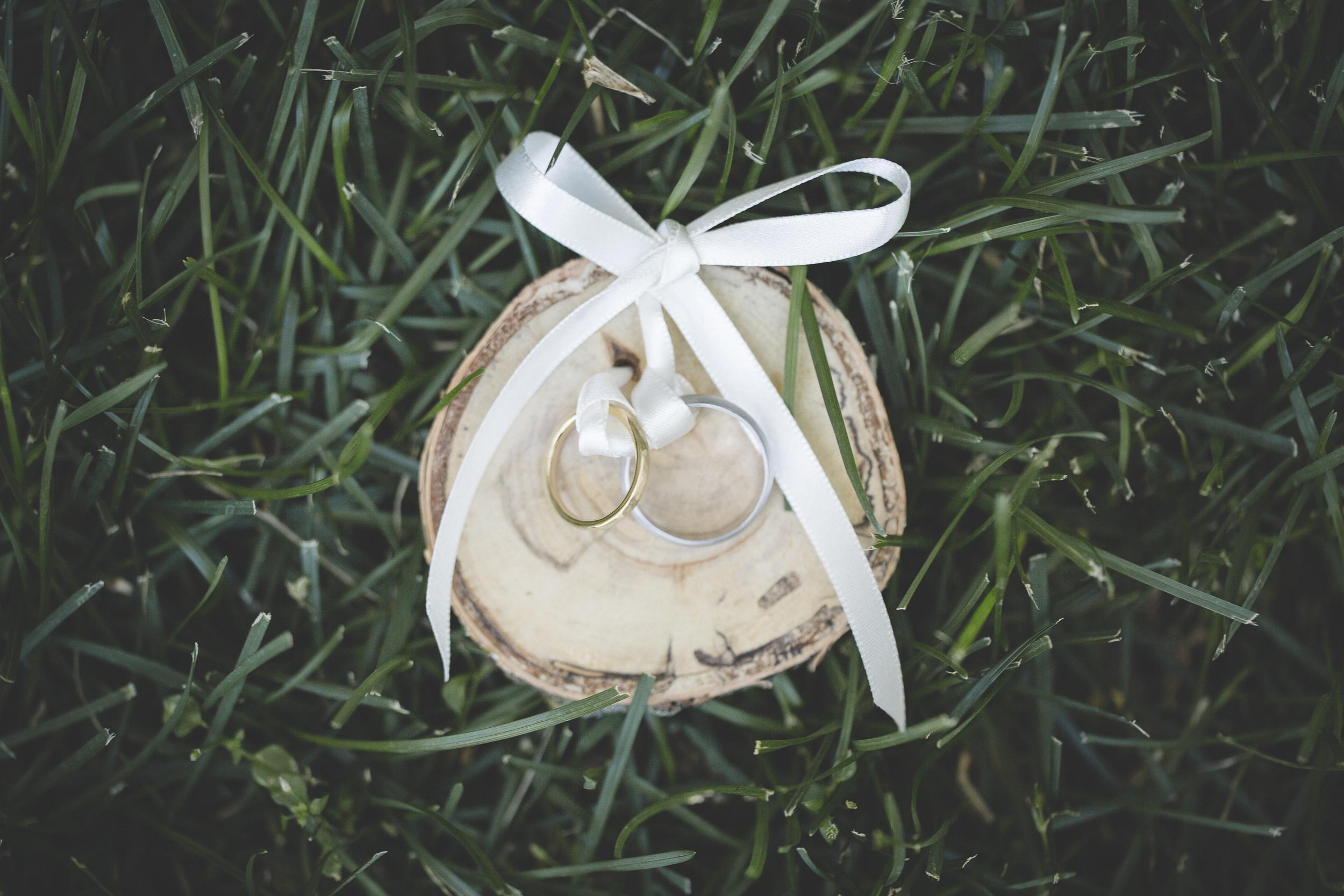 3 Minneapolis home backyard wedding rings.jpg