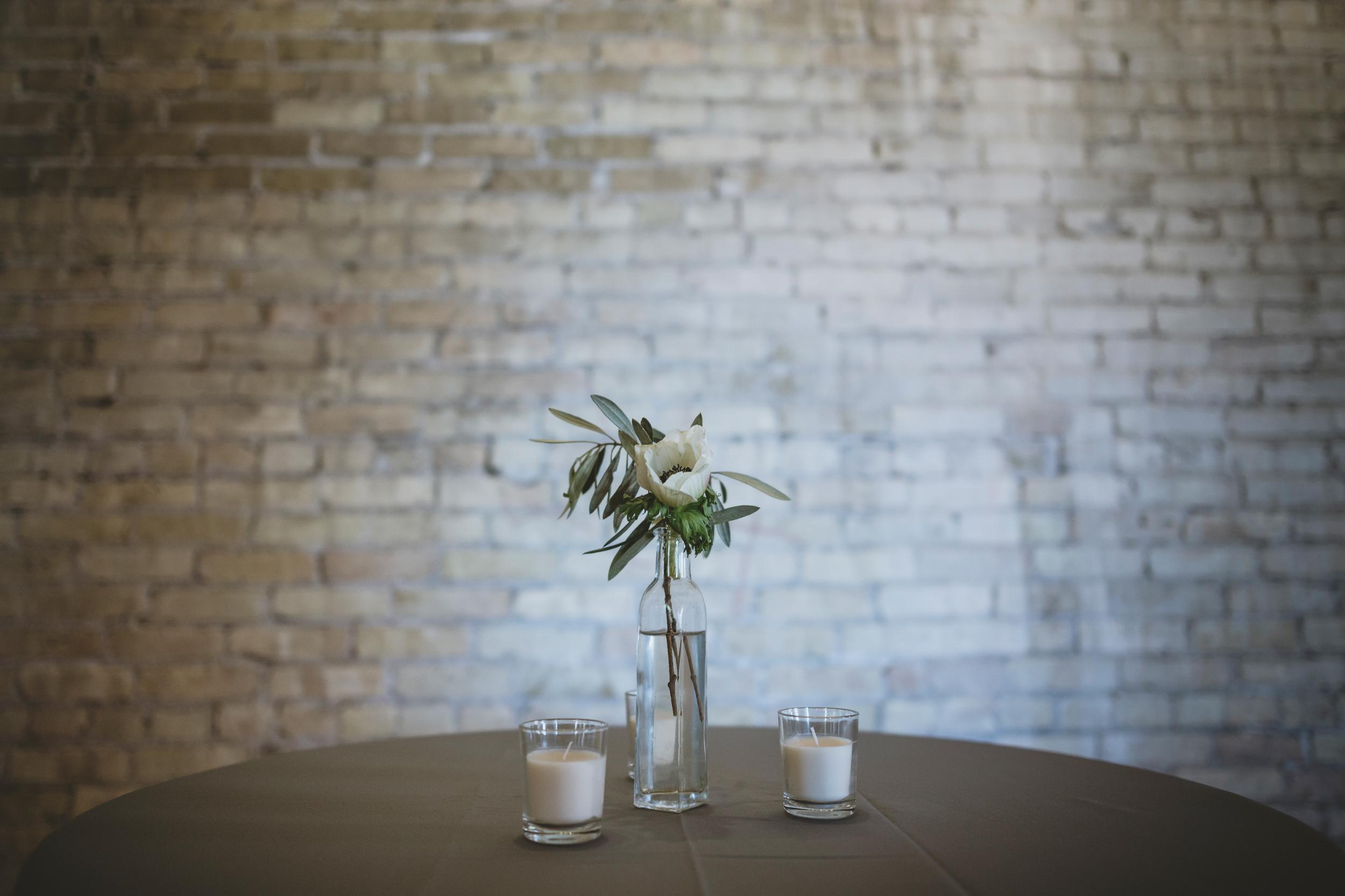 lageret madison wisconsin wedding photographers-52.jpg
