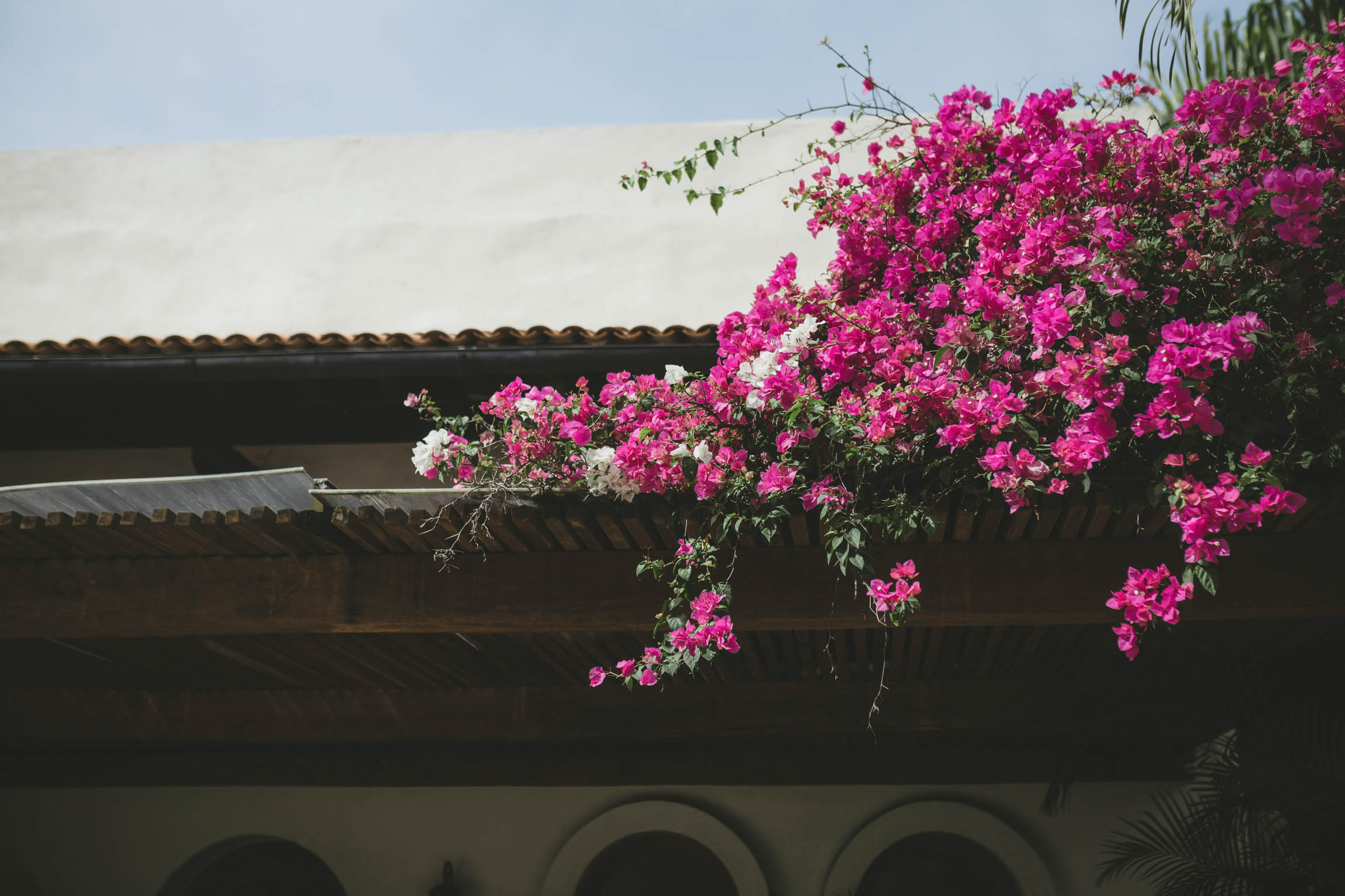 minnesota mexico destination wedding photographer-40.jpg