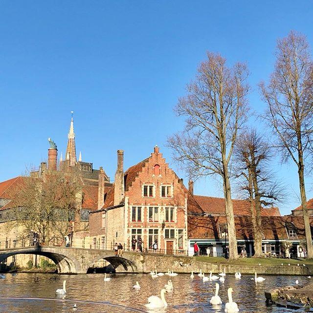 Lovely day in Brugge ☀️