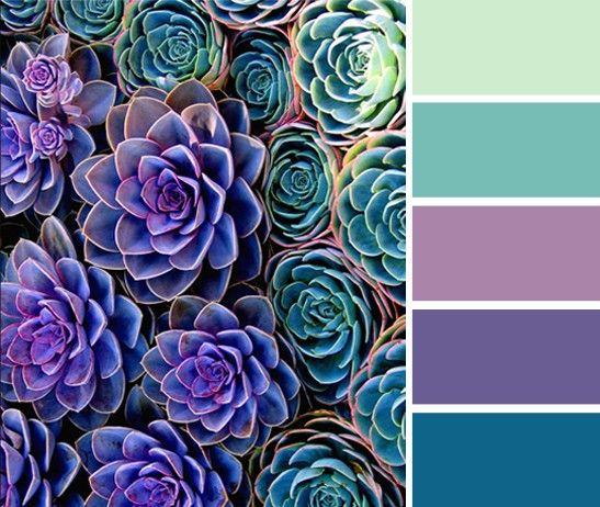 Cool Colors -