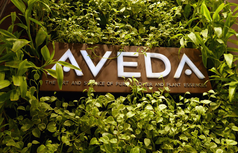Aveda - Our partnership with Aveda isn't just smart business, it's smart relationships. Aveda is the #1 environmental hair care company in the world. The Aveda customer is beyond loyal, therefore helping keep our client base for the long term.