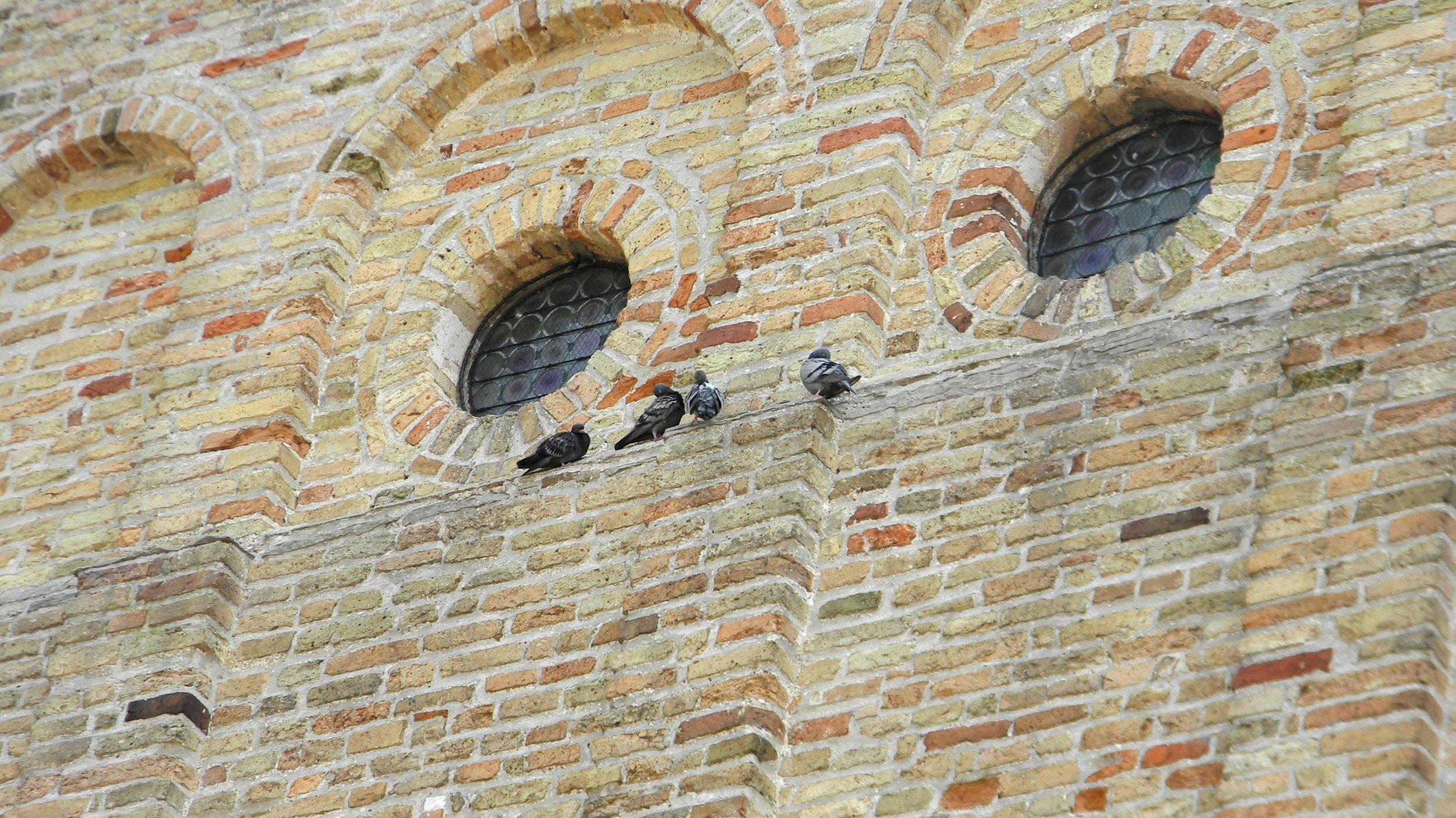Closeup on the façade of the Basilica di Santa Maria Assunta. Photo by me.