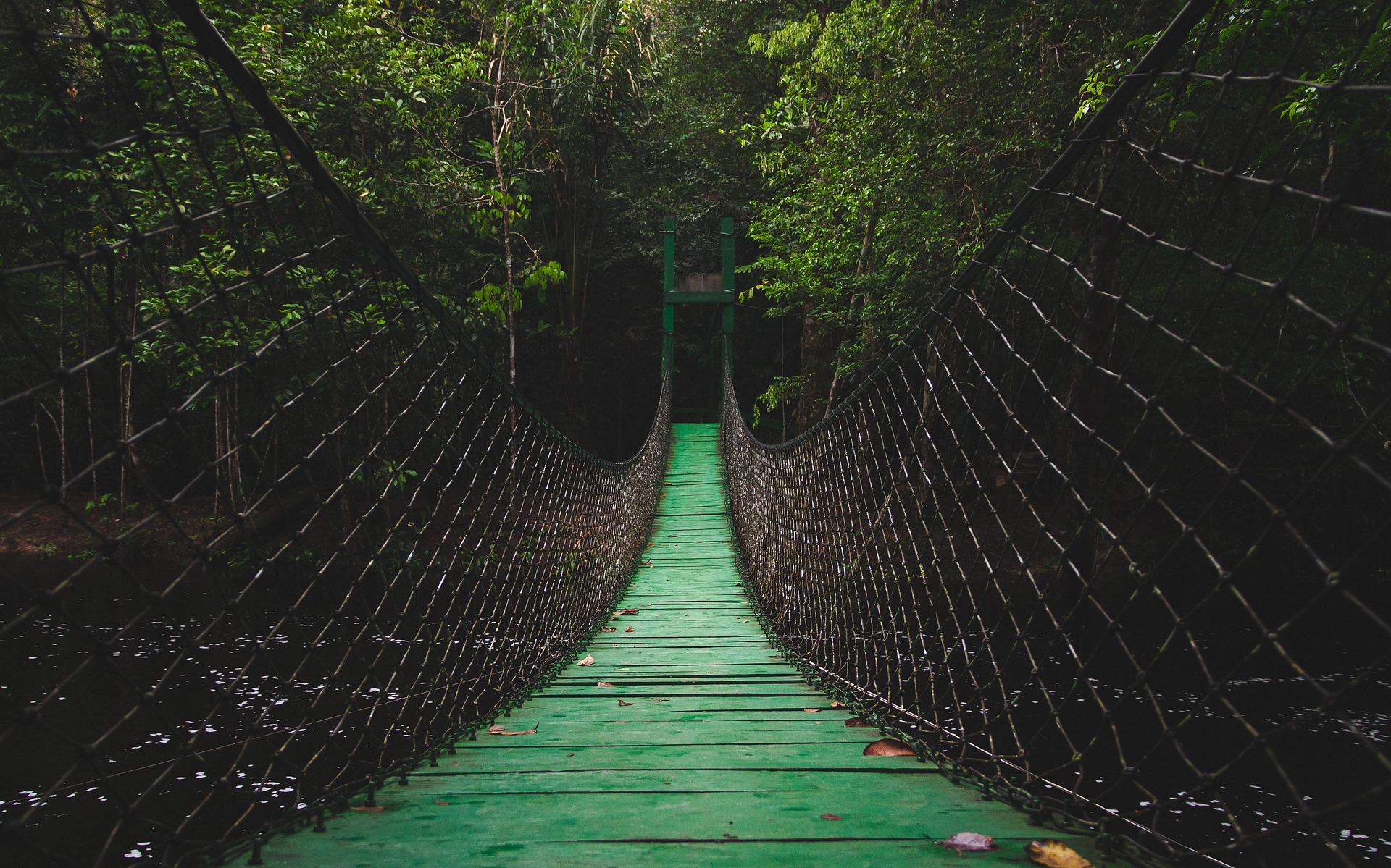 bridge-2203661_1920.jpg