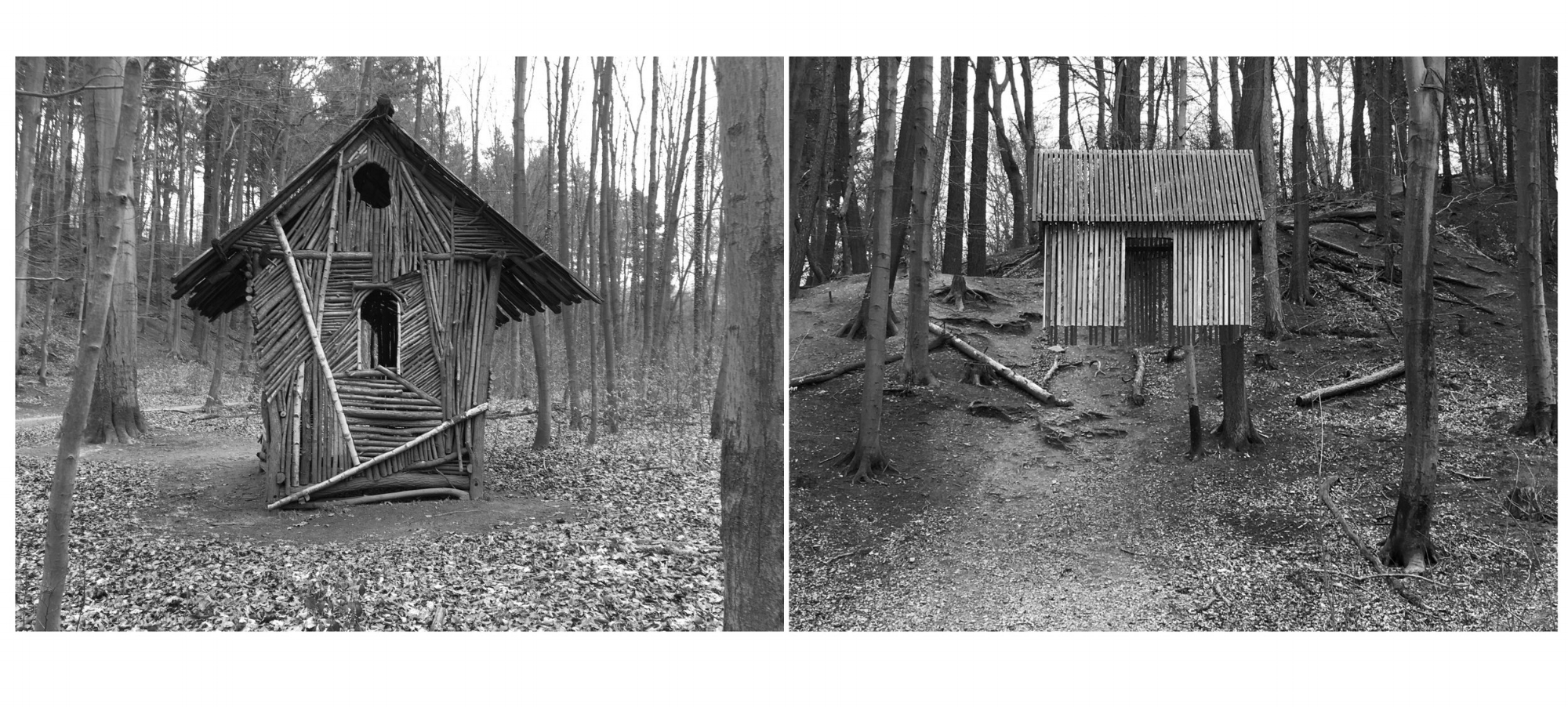 Kunstwald Projects (The Hessian Forest)