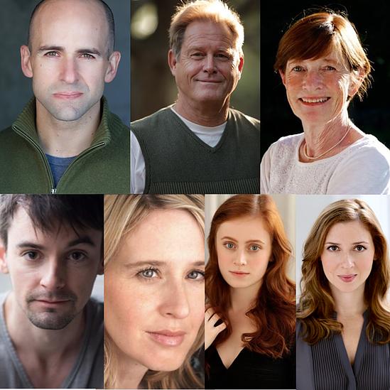 The cast: Mark Bedard, Brian Kerwin, Ann McDonough, David McElwee, Polly Noonan, Susannah Perkins, Miriam Silverman