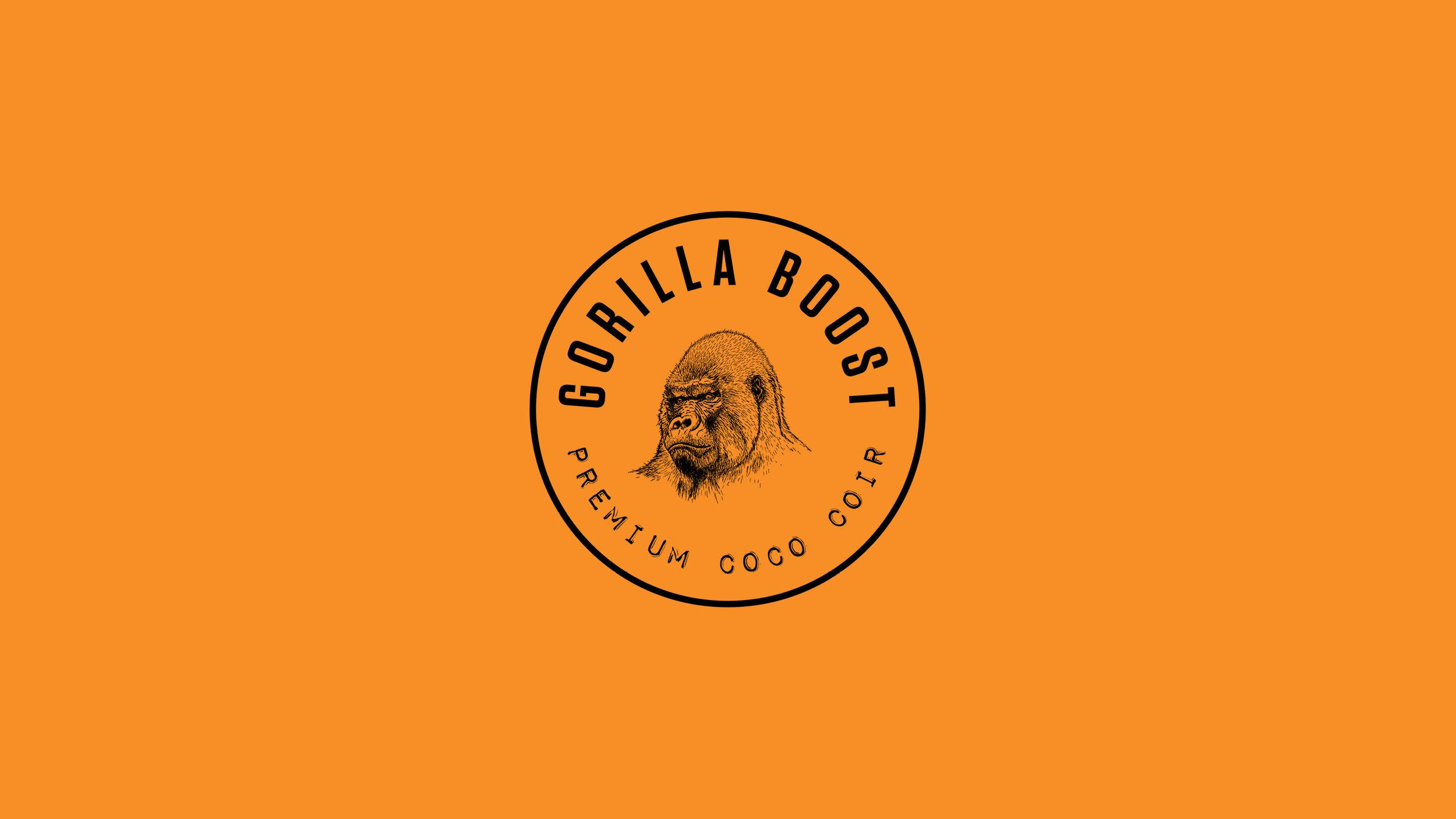 Gorilla Boost_Case Study2.jpg