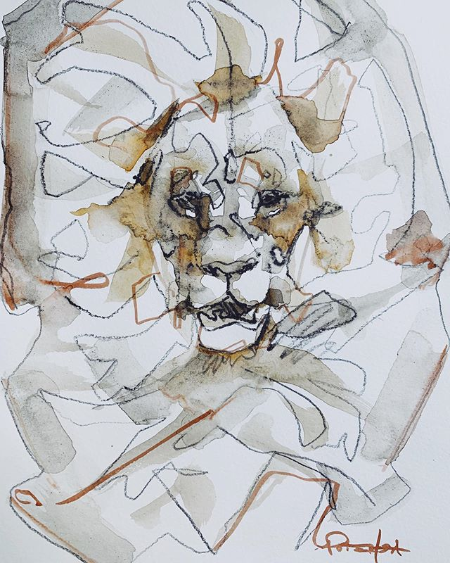Sketchie sketchie 🦁 . . . . #sketchbook #lion #art #linedrawing #watercolour #catsofinstagram #cat #animalart #painting #drawing #sketch #canadianartist #line #mixedmedia