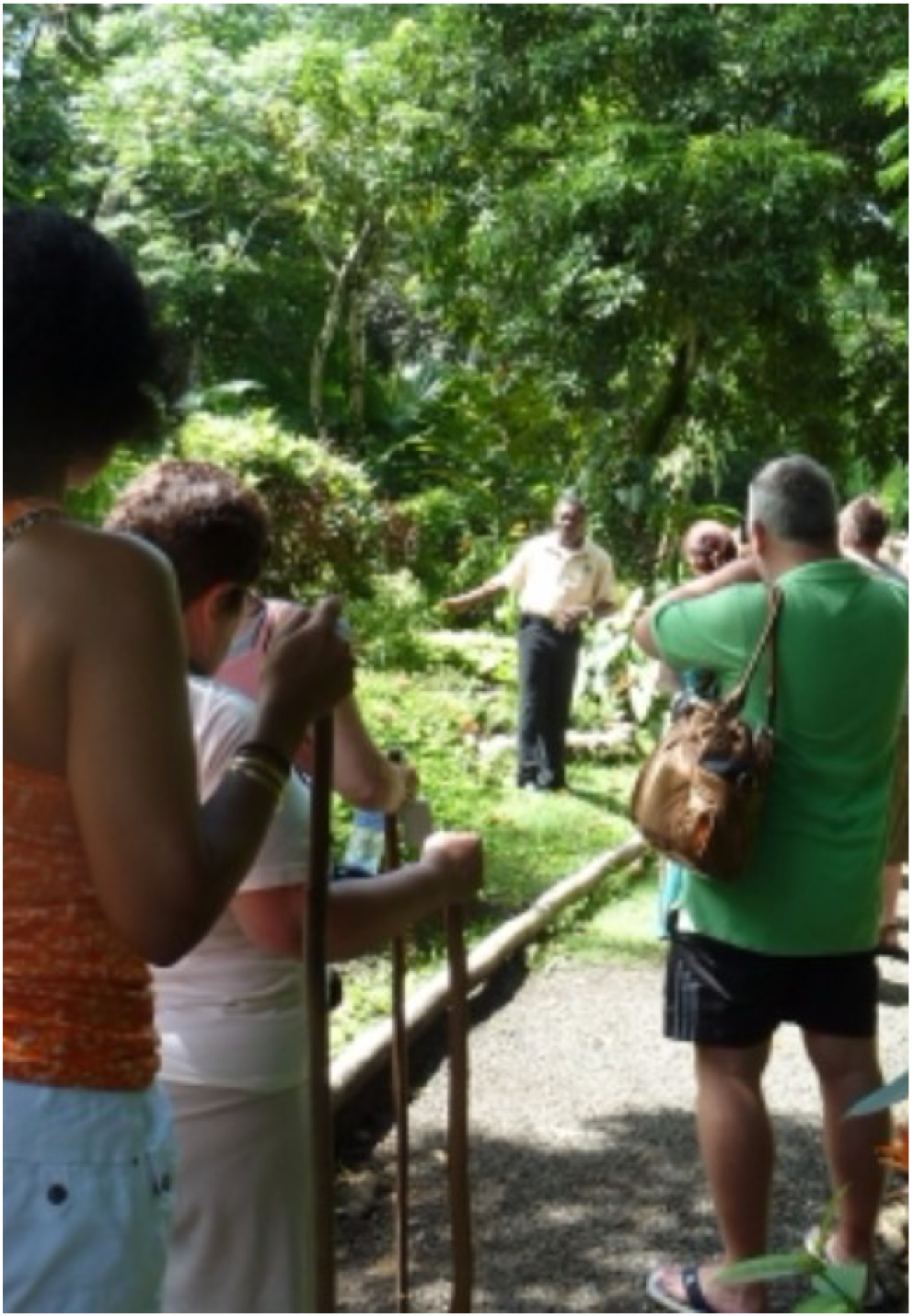 LUSHAN COUNTRY LIFE   A family owned and run tour and an authentic insight into the Saint Lucian culture. Explore the St Lucians' ancestors and forefathers traditional houses, discover the island's spices, fruits and tropical birds through the garden and rainforest trails. A tour for the whole family to enjoy.