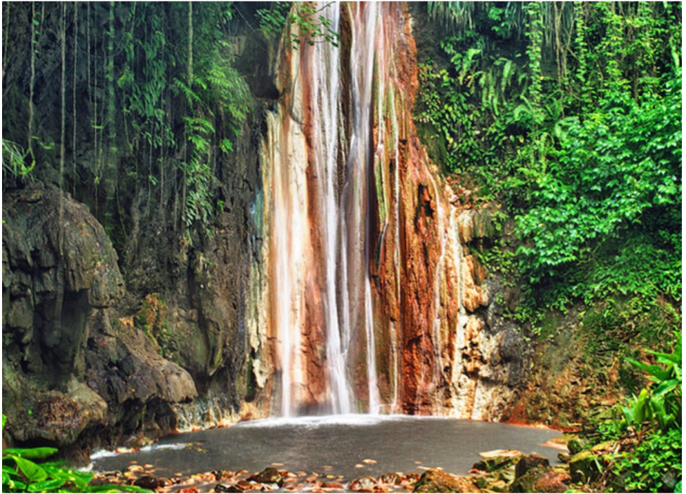 DIAMOND BOTANICAL GARDENS AND WATERFALLS   Located in Soufriere, this site houses a wide variety of plants and a beautiful collection of flowers, making it every nature lover's ideal spot. Originating from underground thermal springs, the beautiful waterfalls offer mineral baths reputed for their therapeutic benefits.