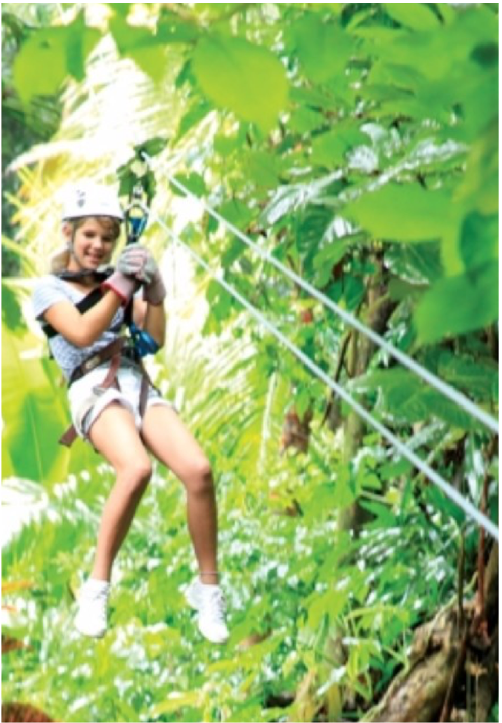 HOT WIRE RIDES IN SOUFRIERE   A more exciting take on sightseeing, this zip-line adventure is a great way to explore the island's whilst admiring some stunning views of the Petit Piton, Soufriere and the Caribbean Sea. The family-friendly tour takes you through the coffee and cocoa plantations of the Morne Coubaril Estate and its beautiful coconut, mango and plum trees, as well as its beautiful bamboo lined gorge.