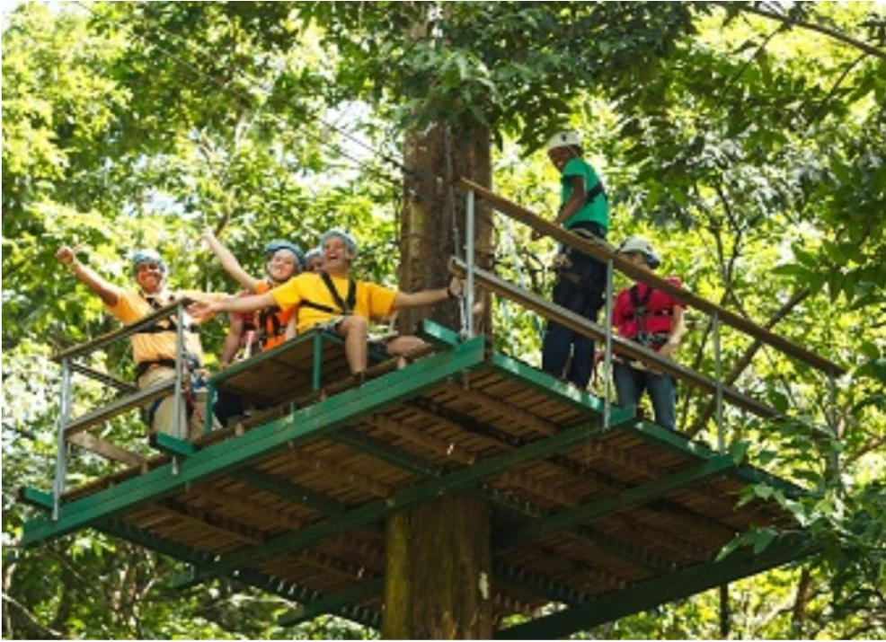 RAINFOREST ADVENTURES   Situated in Babonneau, this site offers a variety of entertaining activities for the whole family to enjoy. Among those, a relaxing canopy tram ride with beautiful panoramic views of the island, or an 18 platforms zip-lining track with Tarzan Swing, Tarantula Nest and Floating Stairs for a more adrenaline fuelled exploration.