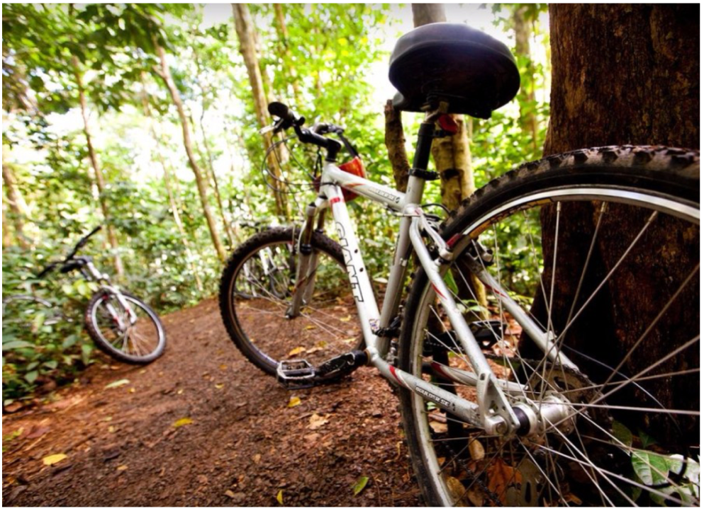 MOUNTAIN BIKING   Cycling can be a great way to explore the island, giving you more time to take in all its beauty. A guided ride along the East coastline will take you through beautiful rainforest trails, with a refreshing stop at Dennery's waterfall and plenty of beautiful picture opportunities.