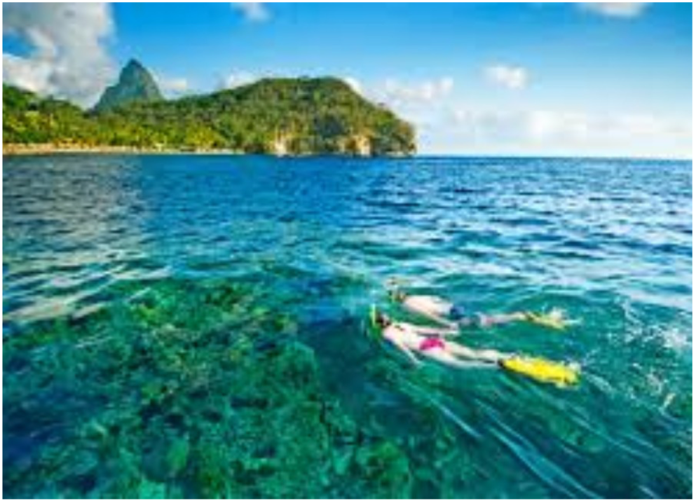 SNORKELLING ON THE WEST COAST   Most snorkelling spots are located on the west coast of the island, where crystal clear waters and vibrant coral reefs house a colourful variety if tropical fish, sometimes only a few yards from the shore.