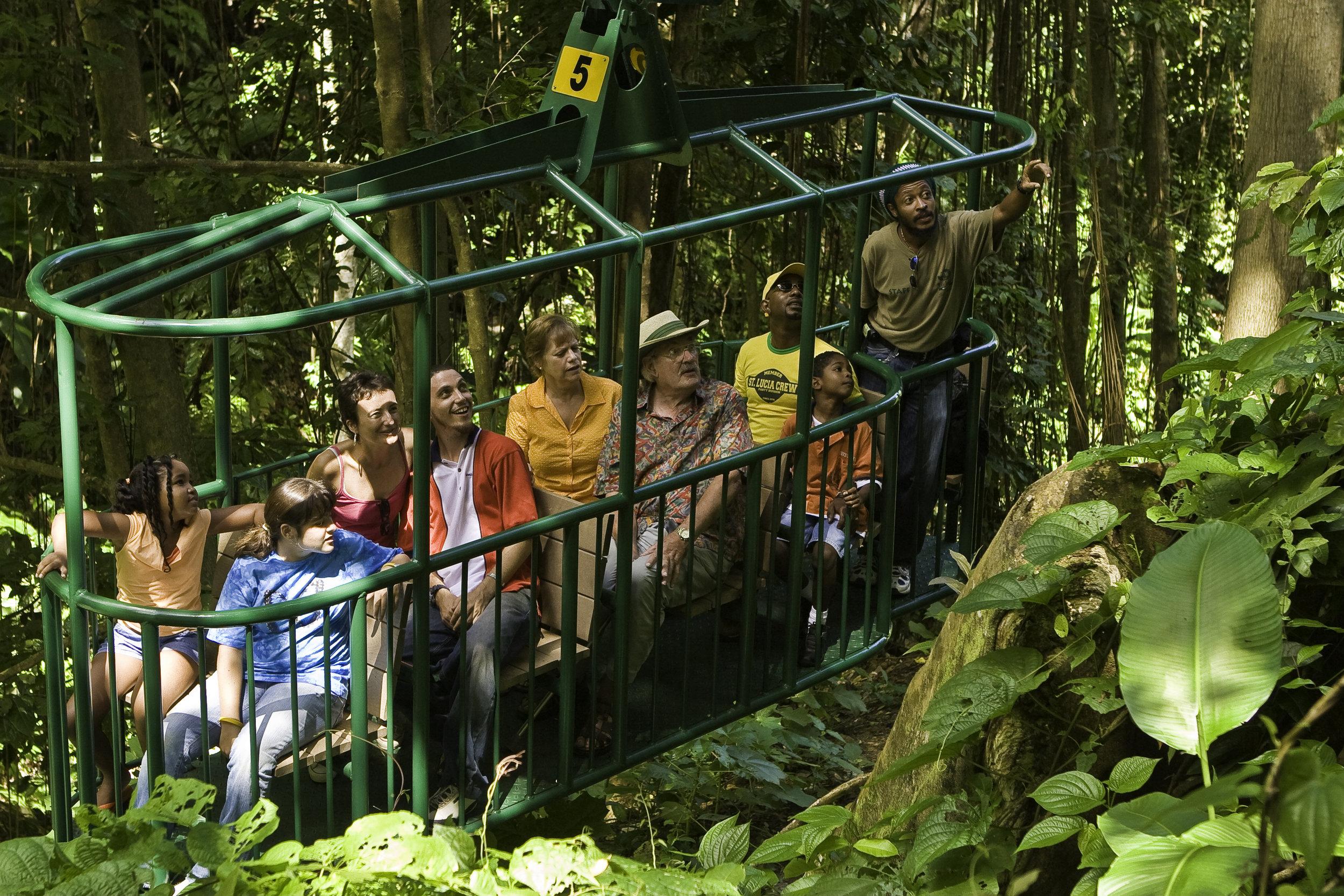 rainforest canopy tram ride.jpg