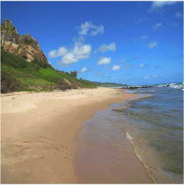 CATTLEWASH BEACH   Known as one of the best health resorts in the Caribbean, it might be the...  More