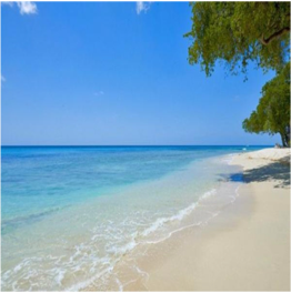 MAHOGANY BAY BEACH   Located in the parish of St.James is a bay that offers calm waters, clear pools...  More