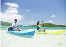 KAYAKING     Another great way to discover the country's natural beauty is to kayak around its beautiful coastline and explore its shallows. There, you will be able to spot and observe a wide variety of marine wildlife, including the playful dolphins at the Tortola Dolphin Discovery!