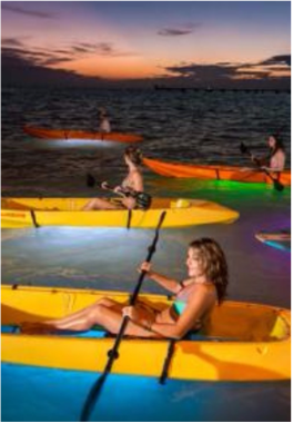 KAYAKING   And to add a touch of excitement to your kayak exploration, you will find operators offering clear bottom kayak tours, including night ones where the kayaks are equipped with LED lighting!