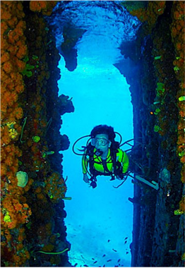 SUPERIOR PRODUCER   Sitting upright at 30 meters deep, this wreck of over 30 years is now covered in varieties of coral, tube and orange cup sponges, and is home to tarpons and great barracudas. Once rated one of the Caribbean's best wreck dives by Sport Diver Magazine.