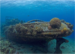 TUGBOAT   Great for both snorkelers and divers, with a little tugboat wreck sitting at just 5 meters, this site is one of Curaçao's most famous.