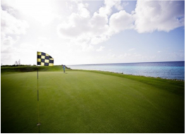 GOLF   Curaçao's great climate offers the ideal conditions for a game of golf at one of the following locations.
