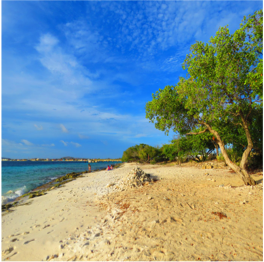 """PLAY PALU DI MANGUEL   The """"Beach of Almond Trees"""", often referred to as Donkey Beach, is a rocky spot...  More"""