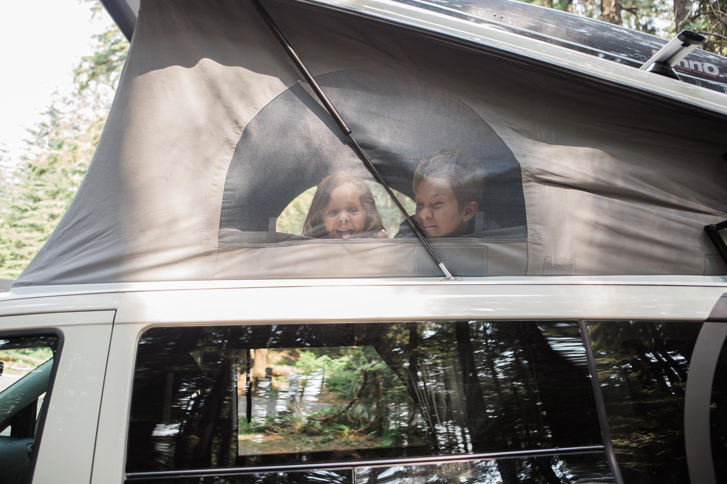 Peace Vans Metris web-14.jpg