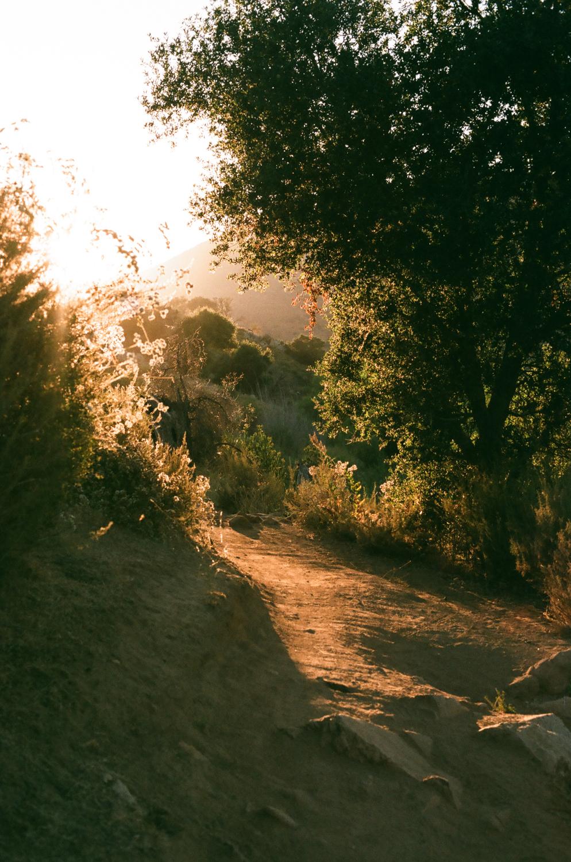 california_30.jpg