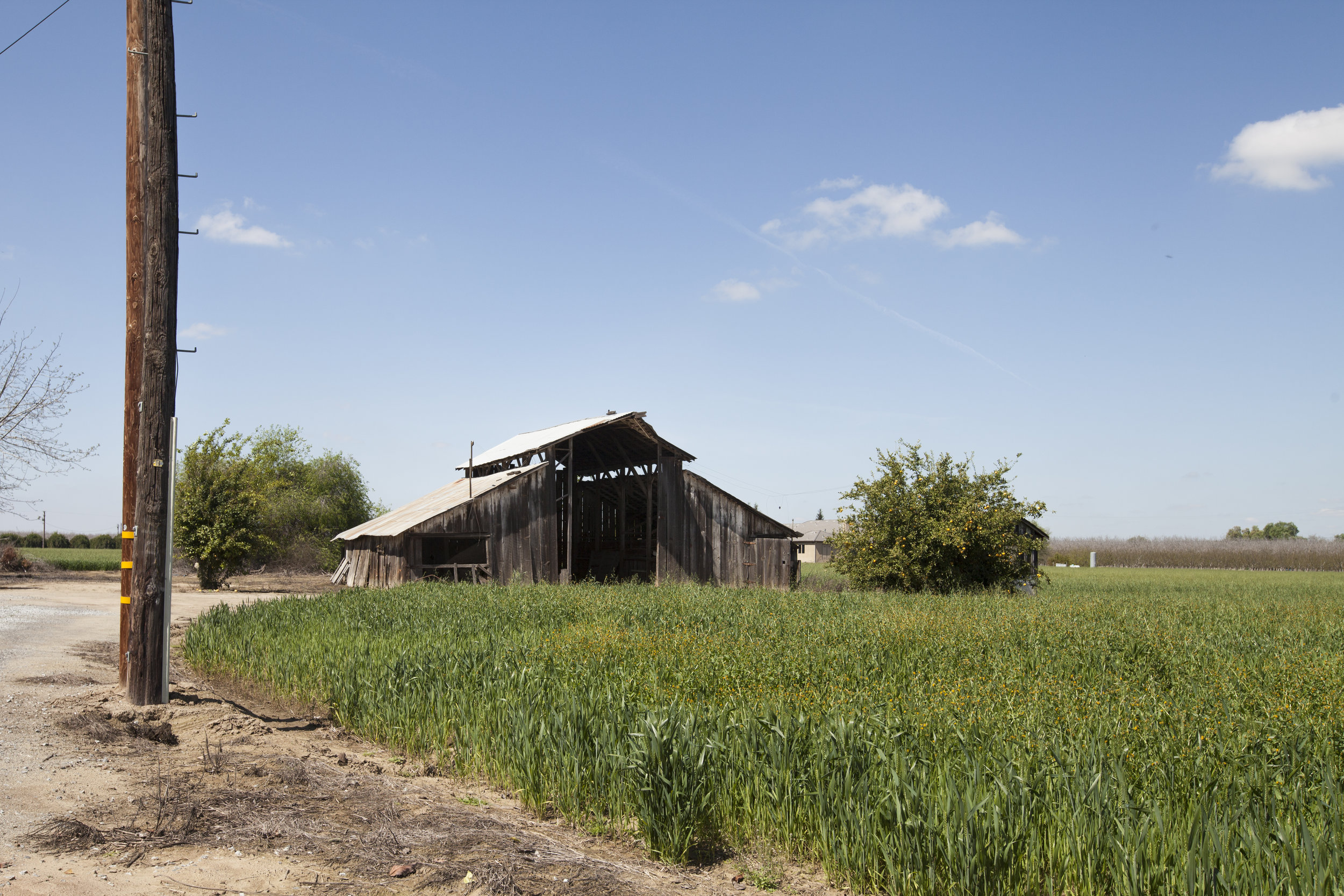 We took inspiration from the landscape around the school. Many beautiful vistas with old barn structures surround the building.