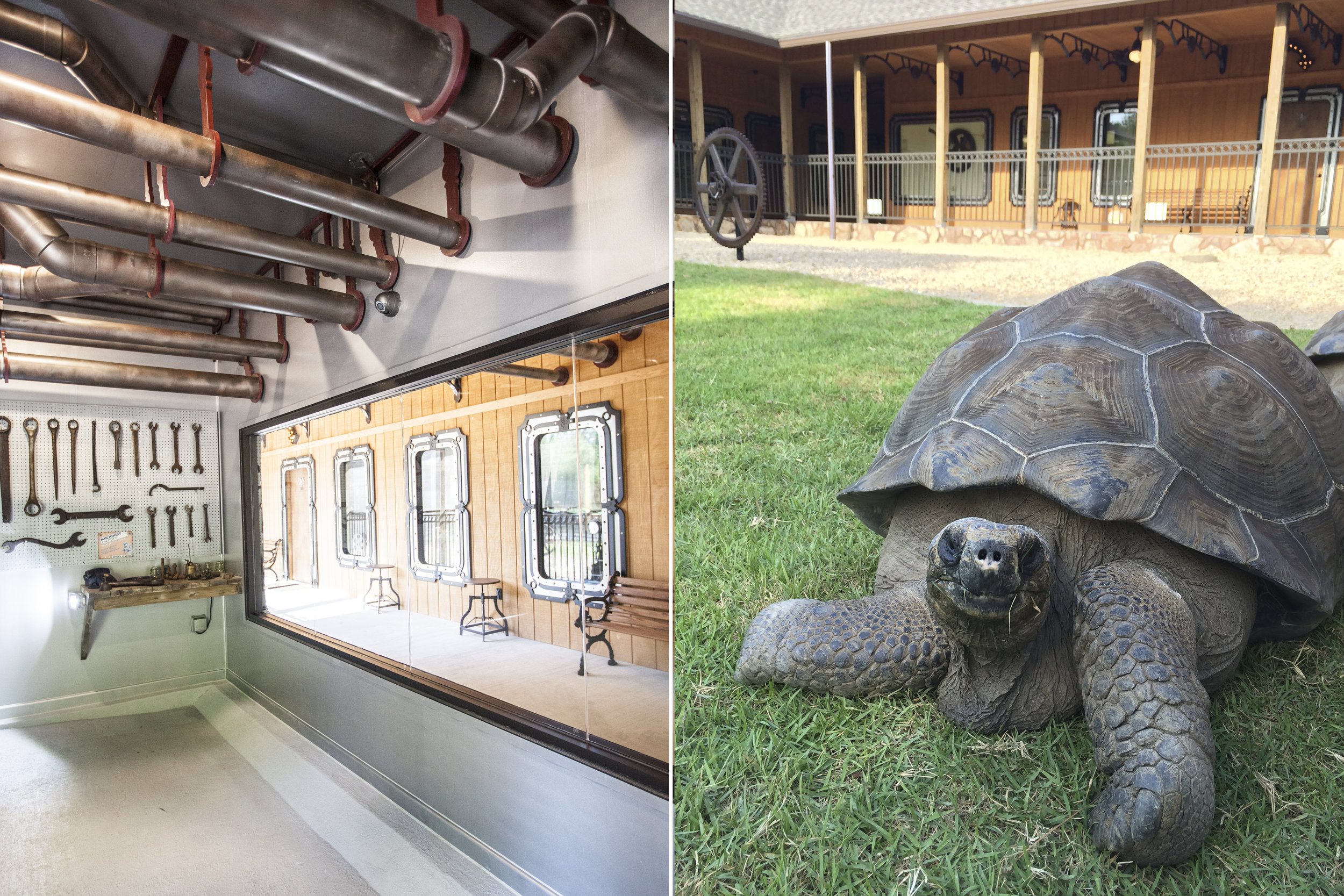 From the tortoise house, one can look out the big window to the covered walkway, or go through the tortoise door into the large tortoise roaming field.