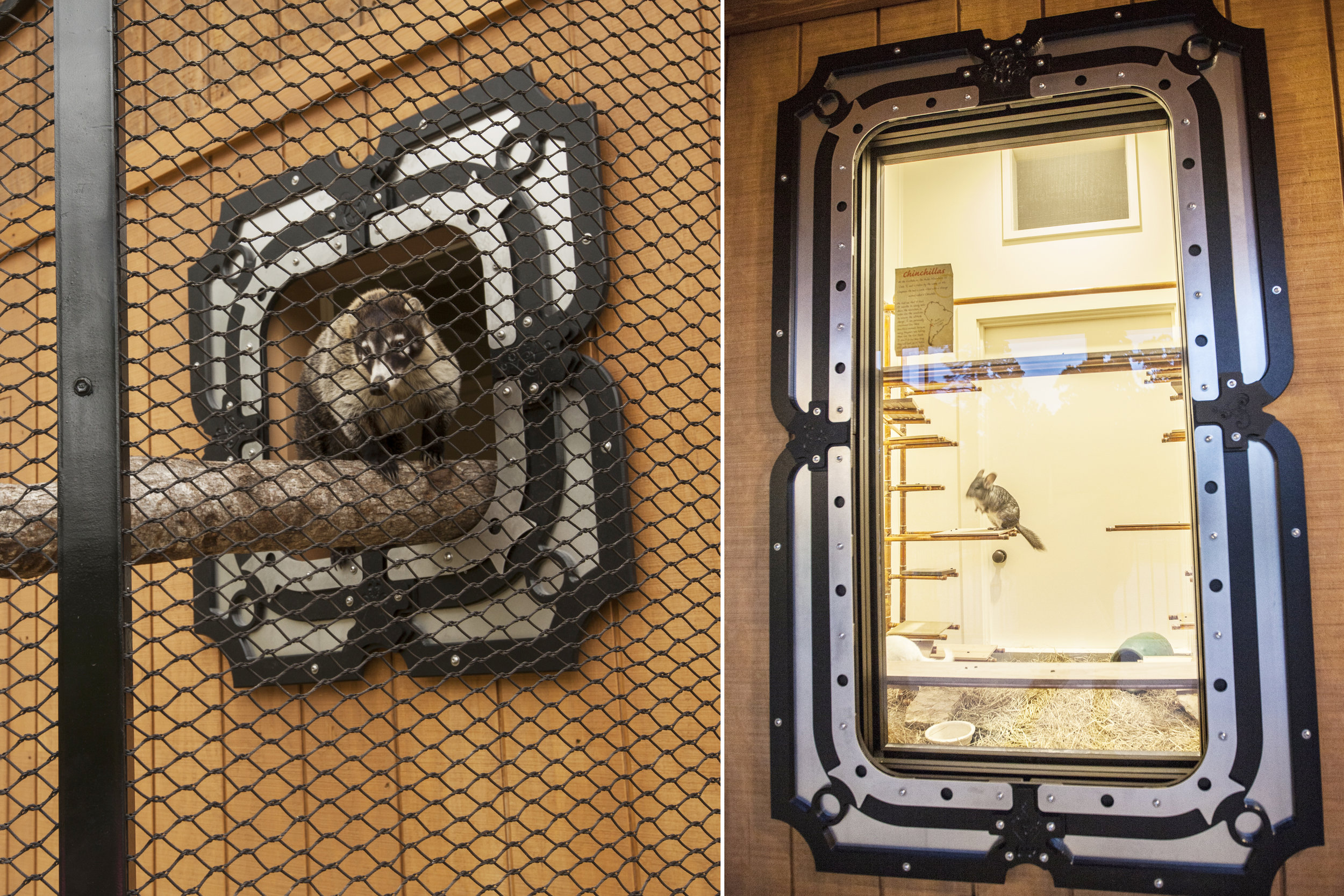 Animal viewing windows and openings everywhere are clad with decorative panels to create a fun and cohesive look throughout the building.