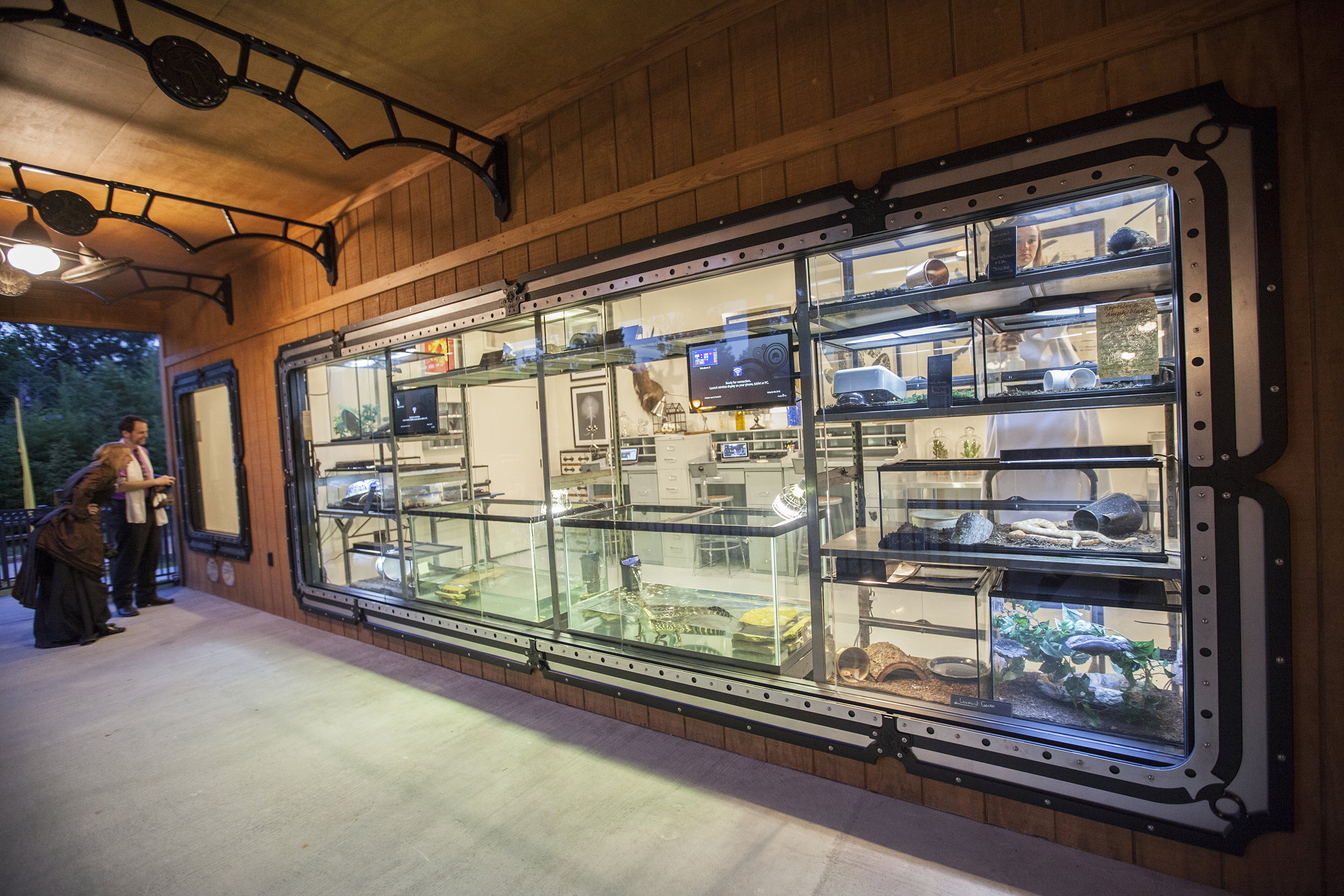 This large window is made to view the reptile exhibit. In the evening it glows wonderfully fromthe inside.