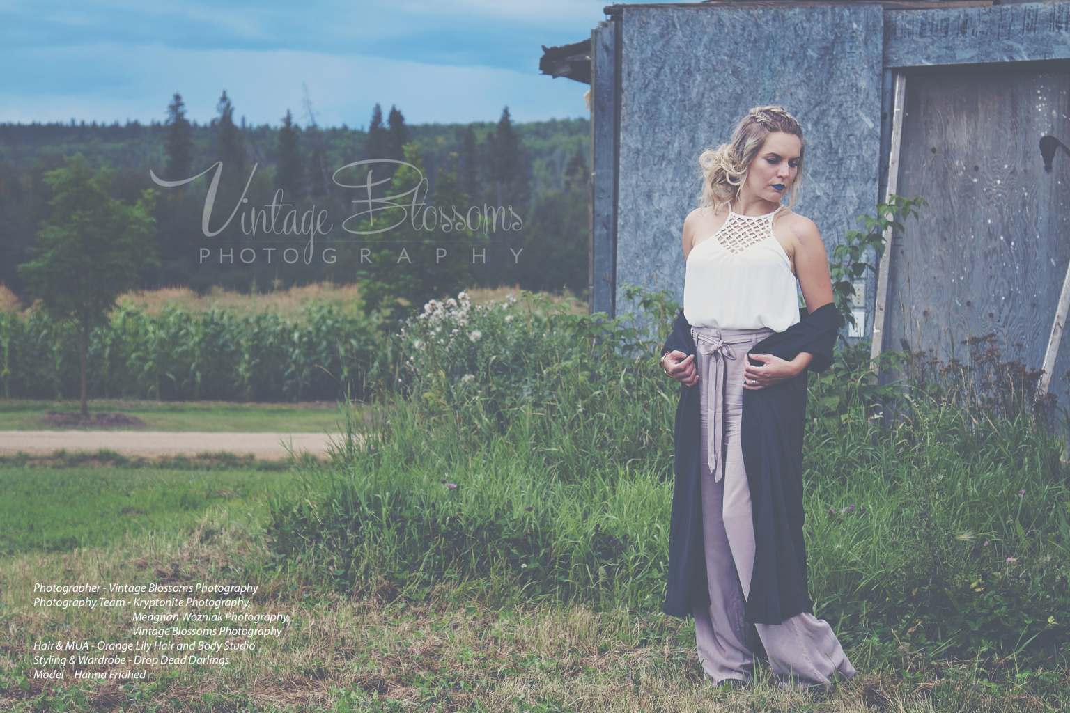 Vintage Blossoms Photography - Vanessa WannerstromFort McMurray