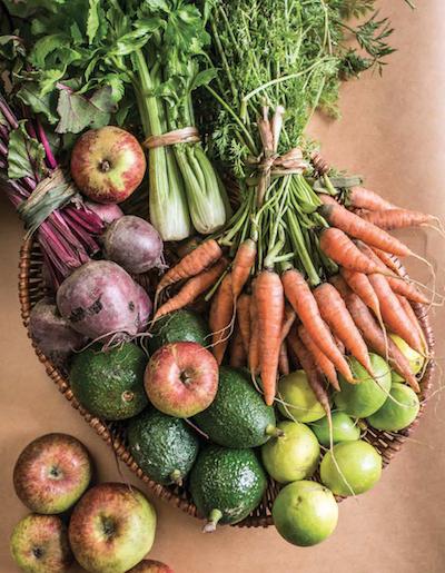 yolcan-chinampa-verduras-vegetariano-orgánico