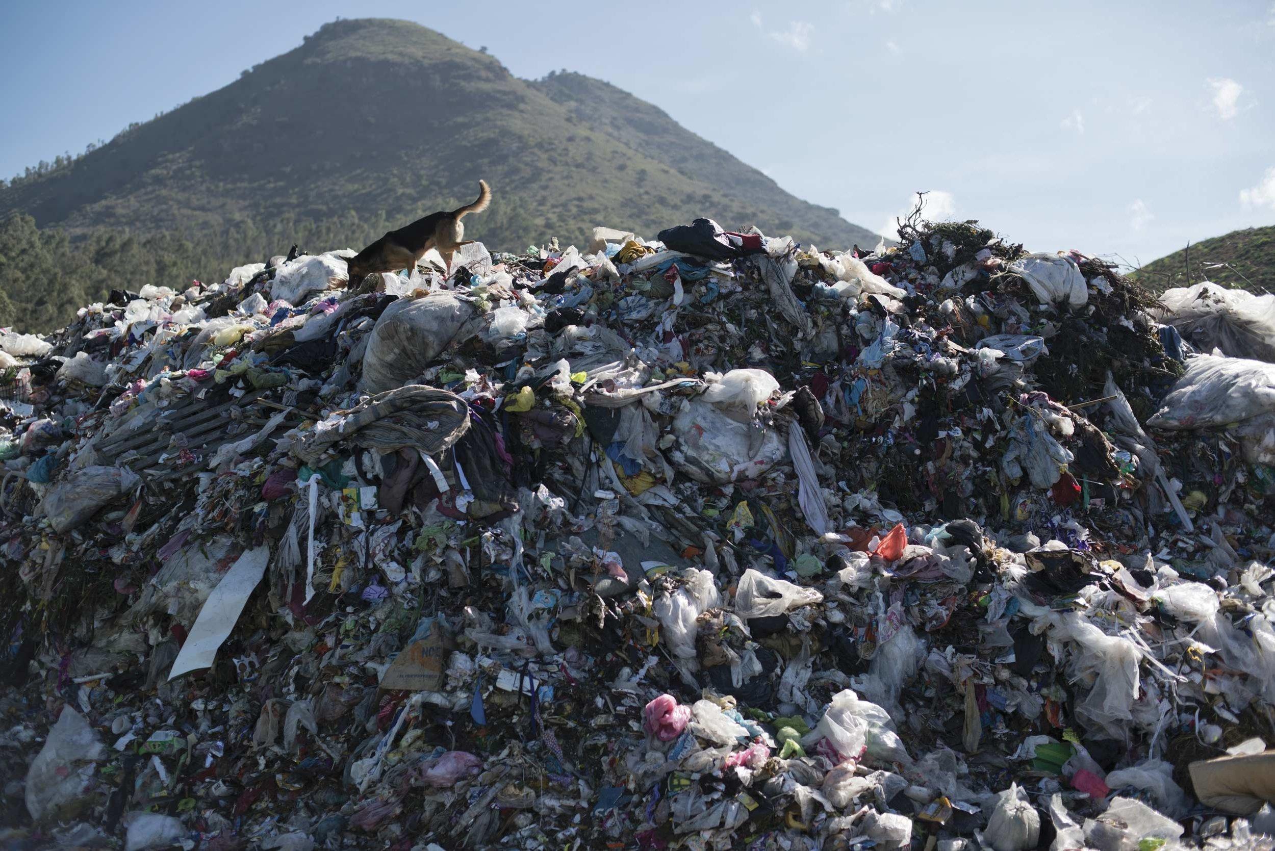 basura-problema-reciclaje-medio-ambiente