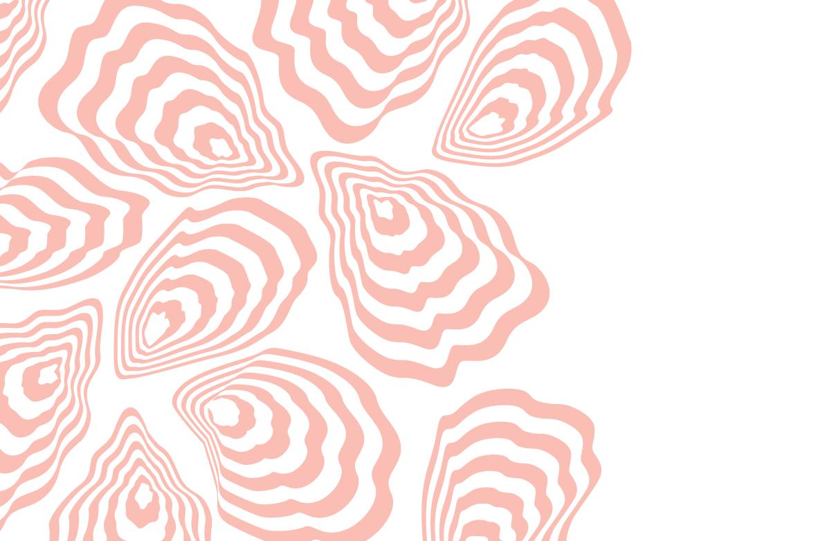 conchas_01_web.jpg