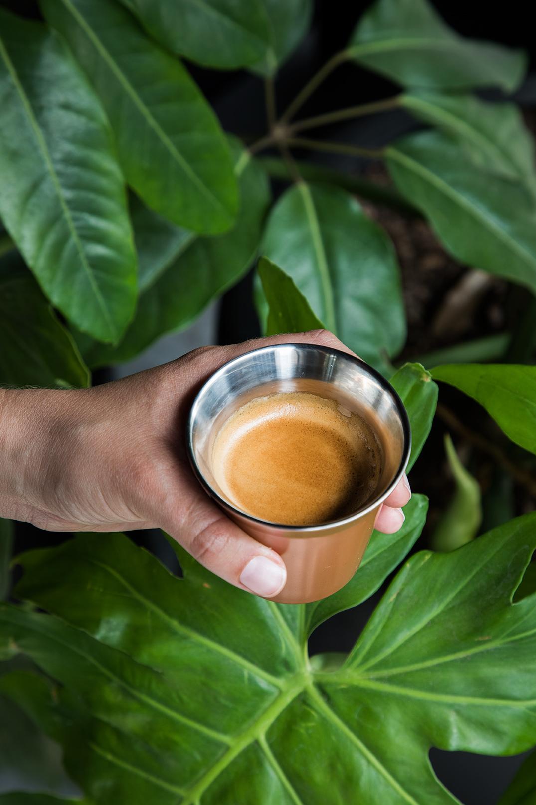 Nespresso_mediodia.jpg