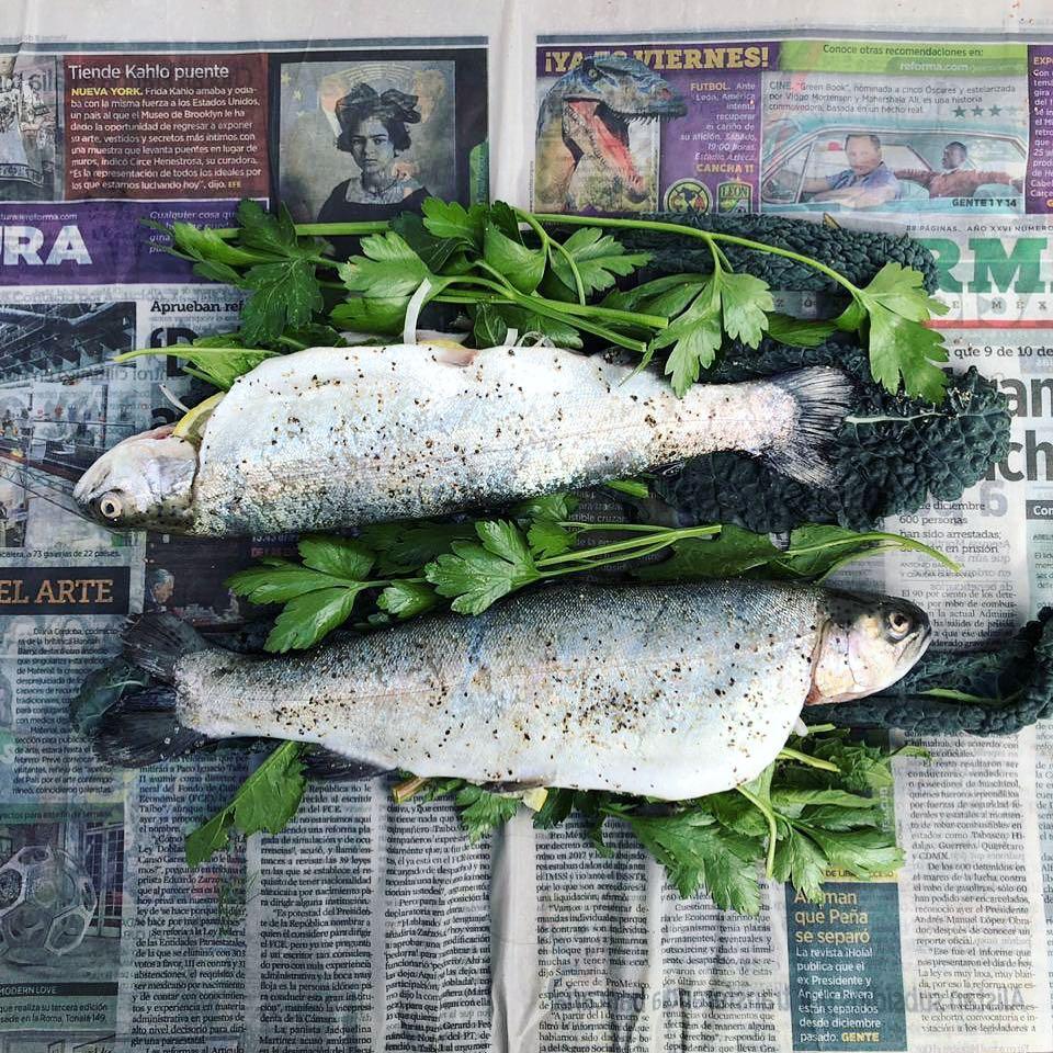 02242019_piedra de cocina-the fish.jpg