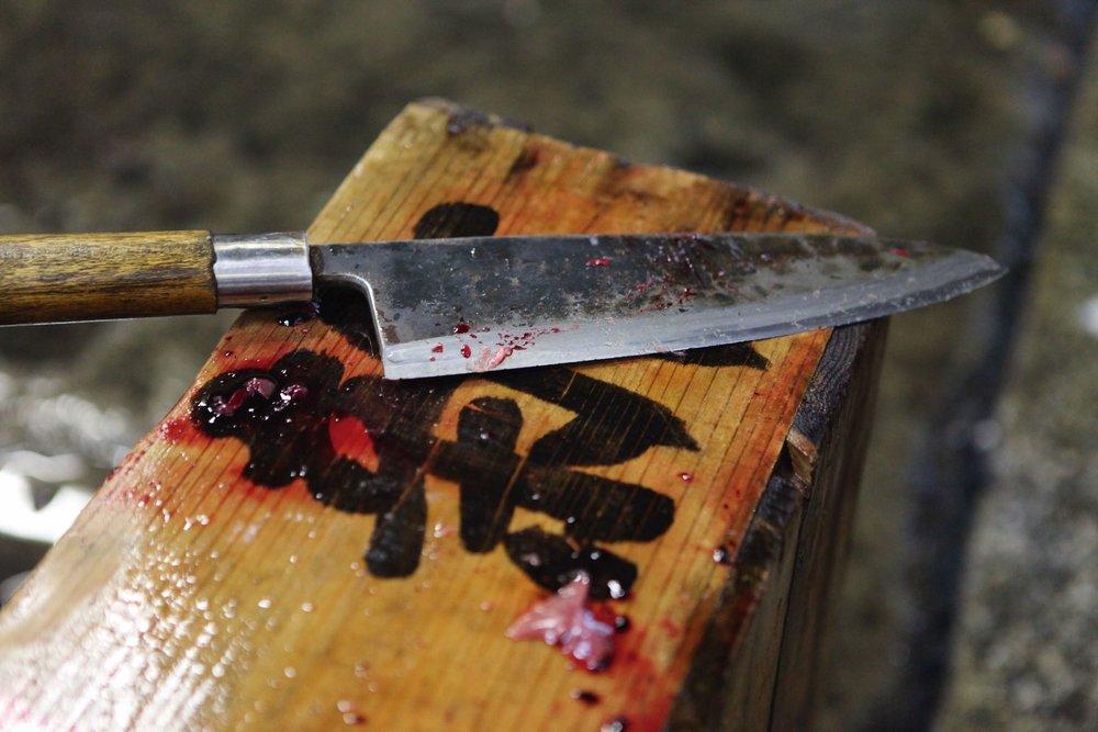 knife / blood