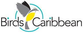 birds-caribbean