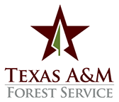 TAMU Forest Svc logo