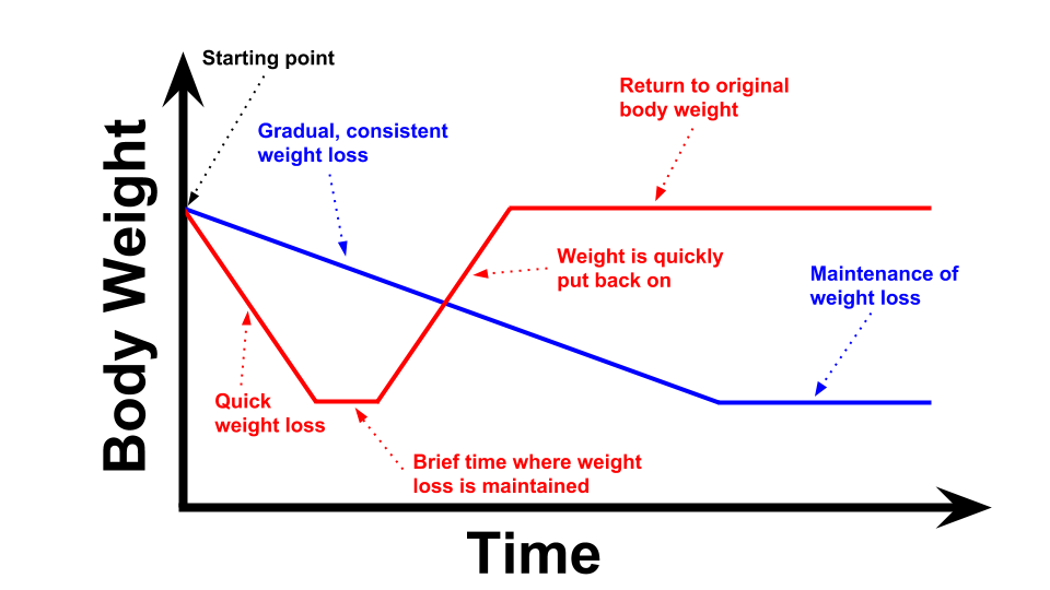 Lifestyle changes vs diet graph.png