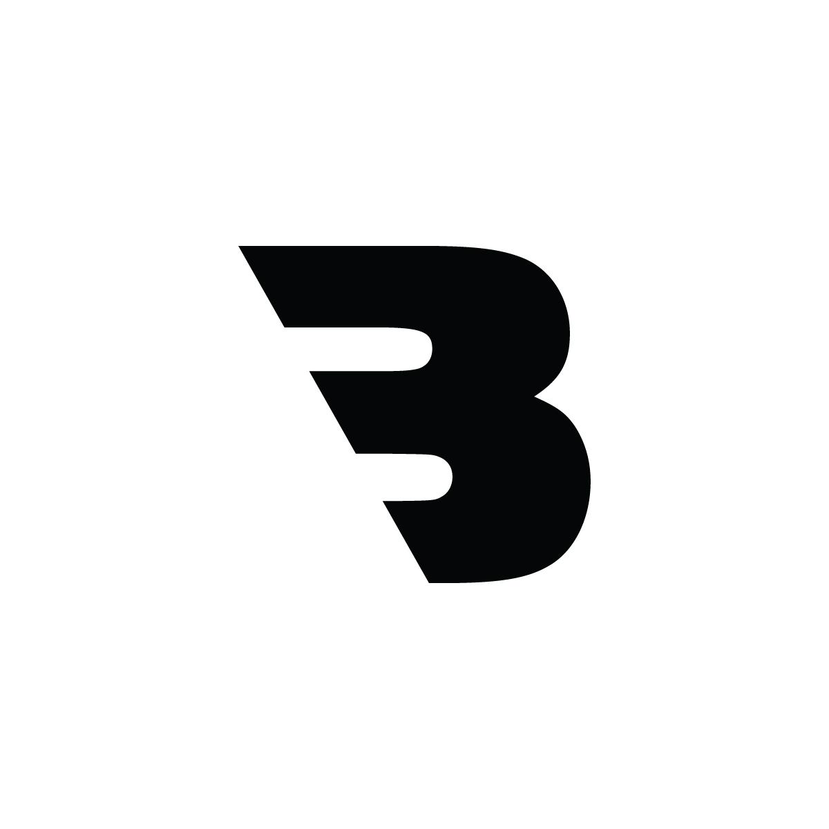 Blitz_Logo-01.jpg