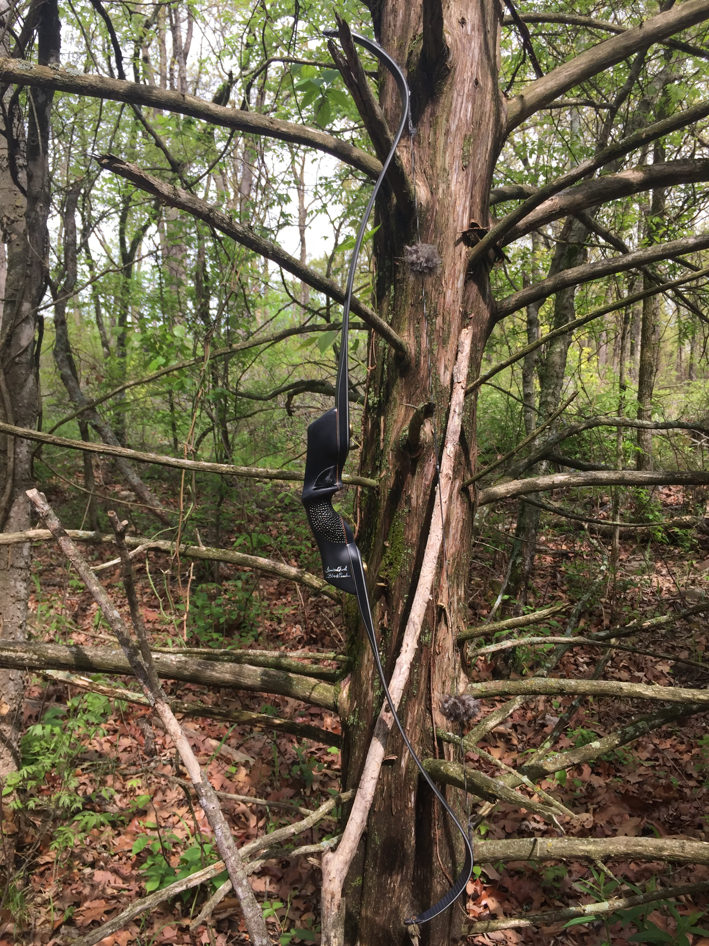 G3SS Super Static Recurve Limbs — TimberGhost Traditional